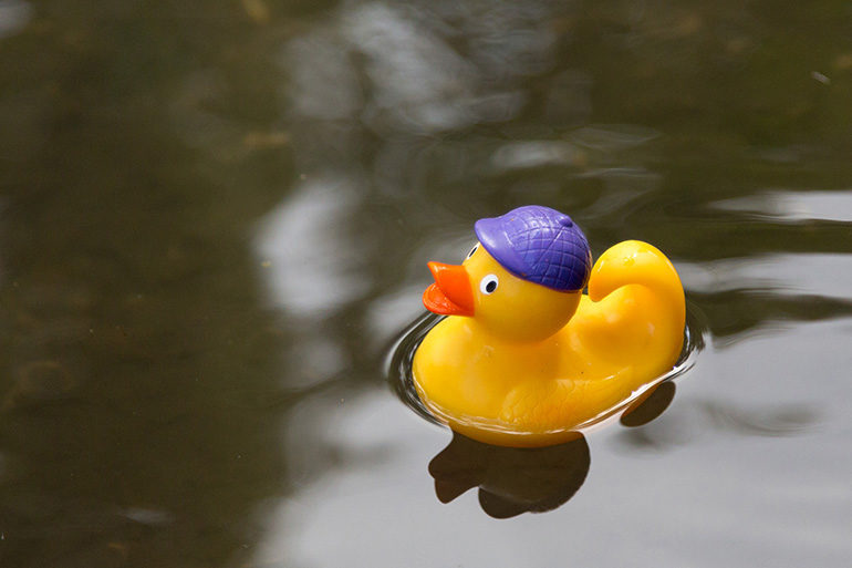 Image of a plastic duck