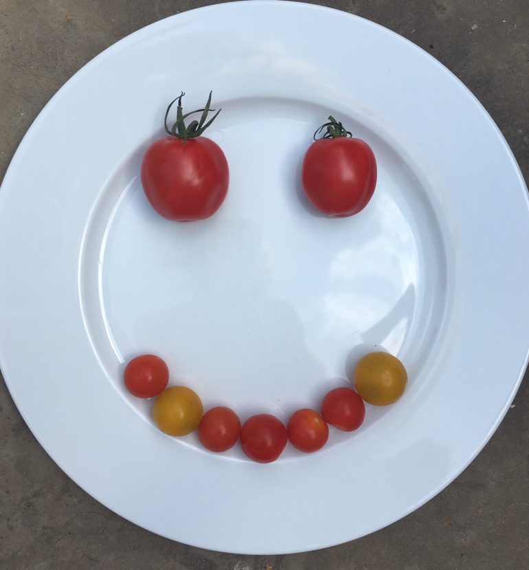 Image of tomatoes on a plate