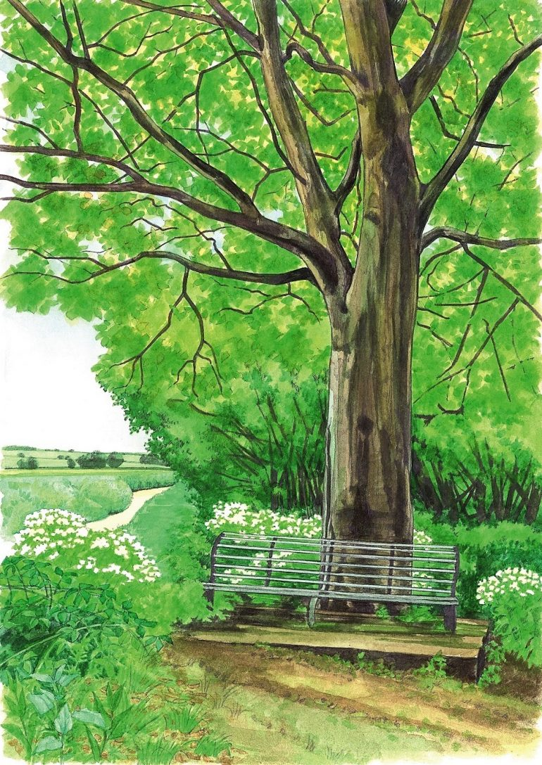 Image of a bench painted by Linda Benton