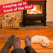 Image of a dog sleeping in front of a fire