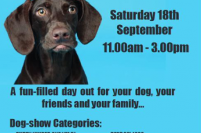 Poster of Dogs day Out